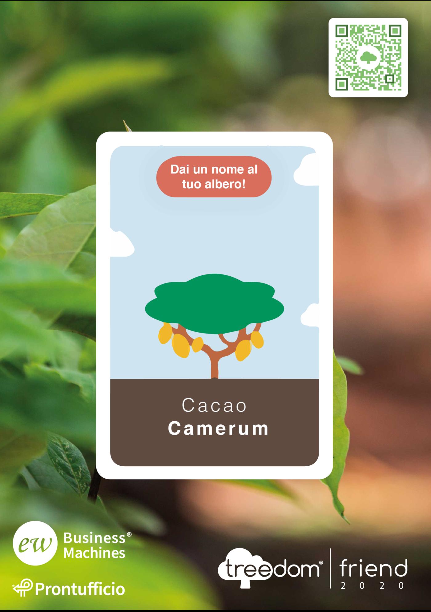 treedom - Foresta Camerun Ew Business Machines
